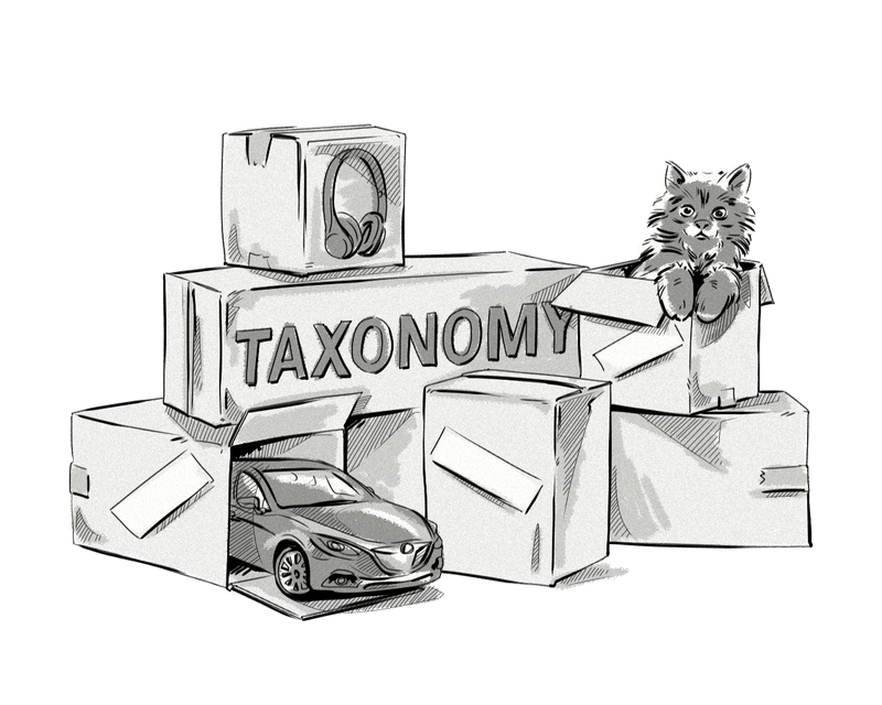 What is Taxonomy in a DMP?