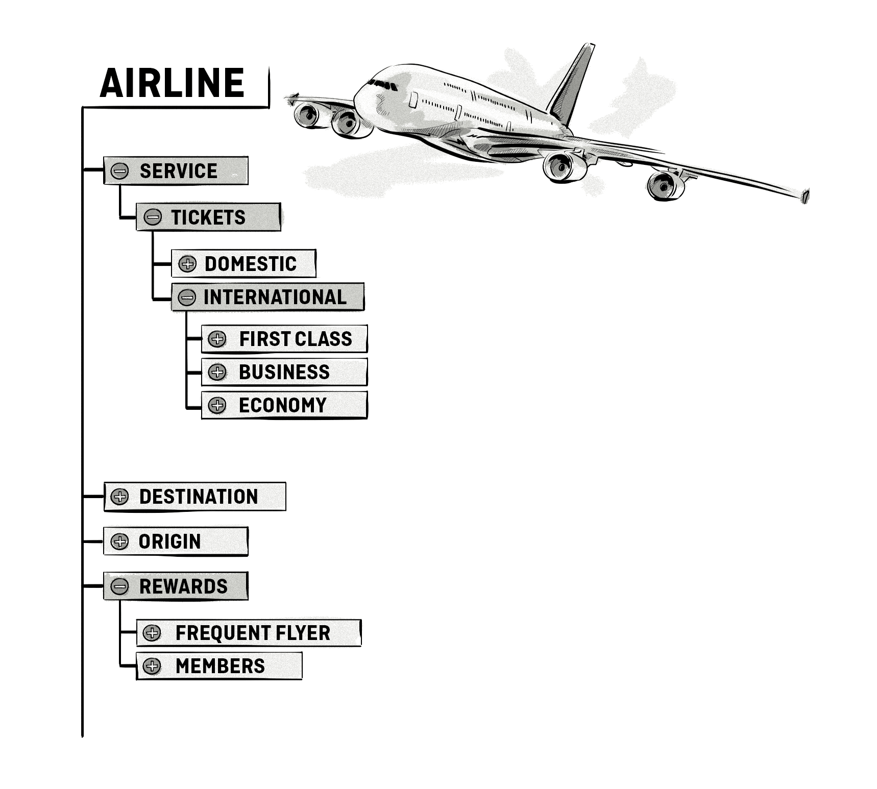 taxonomy for an airline