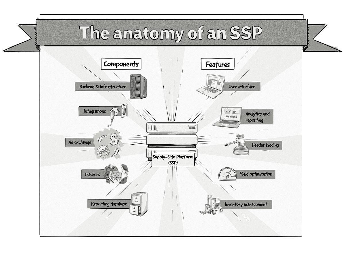la anatomía de SSP